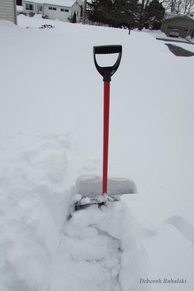 snowshovel80dpi